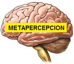 metapercepcion.com